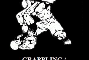 grappling-300x275